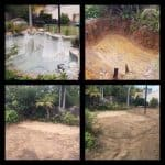 before and after of our swimming pool removal service